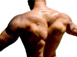 Adopte un bodybuilder